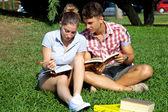 快乐的学生用书在公园 — 图库照片