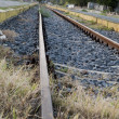 Stock Photo: Old Railway Line Tulcea