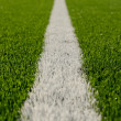 Soccer field - Foto Stock