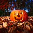 Halloween pumpkin — Stock Photo #13503794