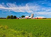 американская страна ферма — Стоковое фото