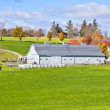 Generic Dairy farm — Stock Photo