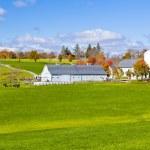 Generic Dairy farm — Stock Photo
