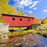Covered bridge — Stock Photo #23792661