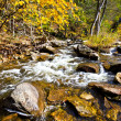 Fall stream — Stock Photo