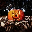 Halloween pumpkin — Stock Photo #23793089