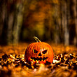 Halloween Pumpkin — Stock Photo #41616869
