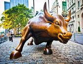 Charging Bull — Stock Photo