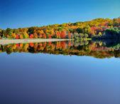 Beautiful fall lake — Stock Photo