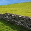 Wall between green pastures — Stock Photo #17392987