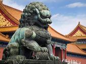 Lion i förbjudna staden peking — Stockfoto