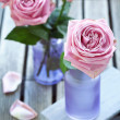 Pink roses — Stock Photo #13171231