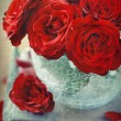 Red roses — Stock Photo #13171844