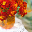 Flowers marigolds - Stock Photo