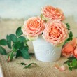 Stock Photo: Fresh roses