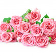 Pink roses — Stock Photo #16180083