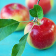 Fresh apples — Stock Photo