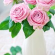 Fresh pink roses — Stock Photo