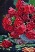 Rote rosen — Stockfoto