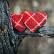 Stock Photo: Couple of hearts