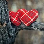 Couple of hearts — Stock Photo