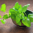 Stock Photo: Lemon balm herb