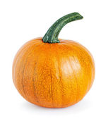 Big yellow pumpkin — Stock Photo