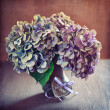 Stock Photo: Hydrangeflowers