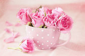 Beautiful fresh roses — Stock Photo