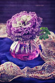 Decorative cabbage flower — Stockfoto