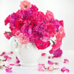 Beautiful tea roses — Stock Photo #49153439