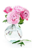 Pink peony and roses — Stock Photo