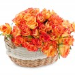Basket of roses — Stock Photo #9841601