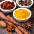 Spice collection — Stock Photo #20616631