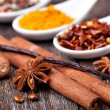 Spice collection — Stock Photo #20616685