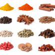 Spice collection — Stockfoto #20617109