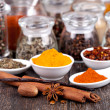 Spice collection — Stock Photo #20617217