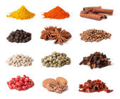 Spice collection — Stock fotografie