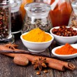 Spice collection — Stock Photo #21463411