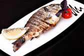 Grilled Sea Bream — Stockfoto