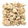 Heap Of Dried Chrysanthemum Flowers — Stock Photo