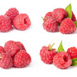 Raspberries — Stock Photo #45517625