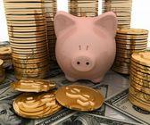 Kumbara ve doları, ekonomi kavramı — Stok fotoğraf