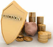 Protection of finance — Stock Photo