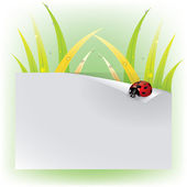 Vector Image ladybug on a leaf — Stock Vector