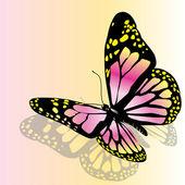 Vektör kelebek — Stok Vektör
