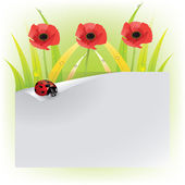 Red poppy with ladybugs — Stock Vector