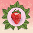 Strawberry — Vector de stock #20800975