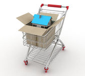 3d model house in a paper shopping box and shopping cart — Stock Photo
