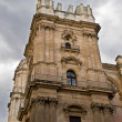 Malaga Cathedral, Andalucia, Spain — Foto Stock